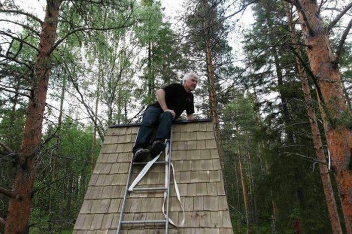 Гостиница на деревьях (14 фото)