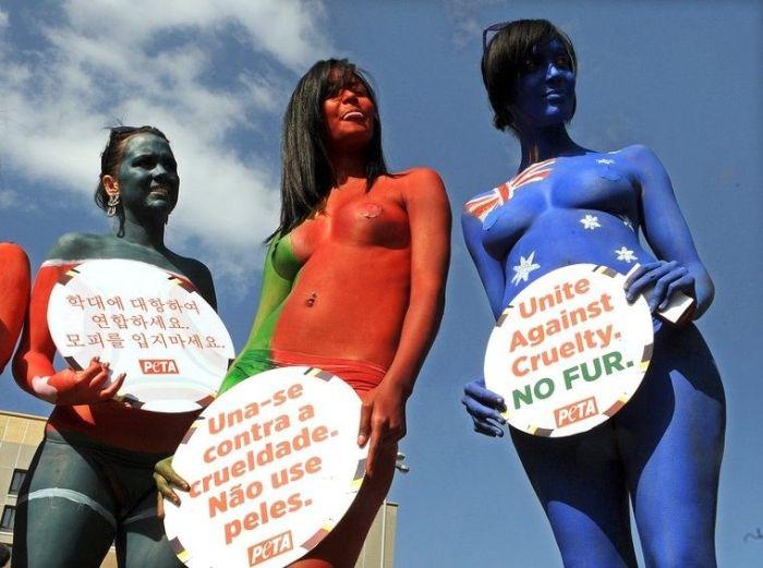 Активистки PETA устроили голый протест (11 фото)