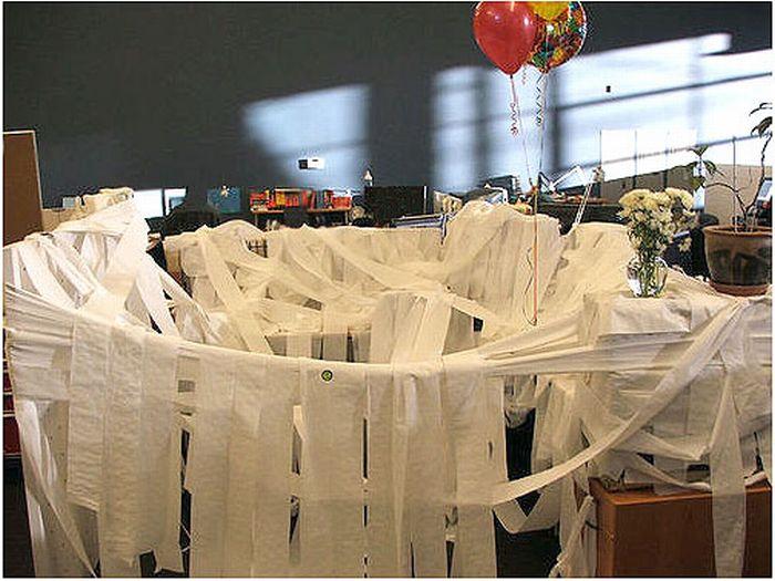 Закидали туалетной бумагой (21 фото)