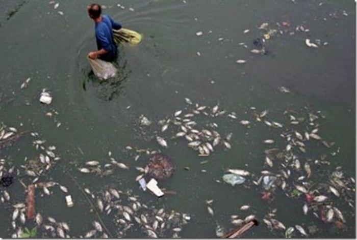 Самые грязные реки мира (22 фото)