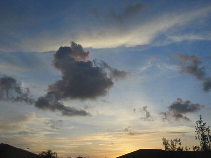 Облака в виде лошадок (17 фото)