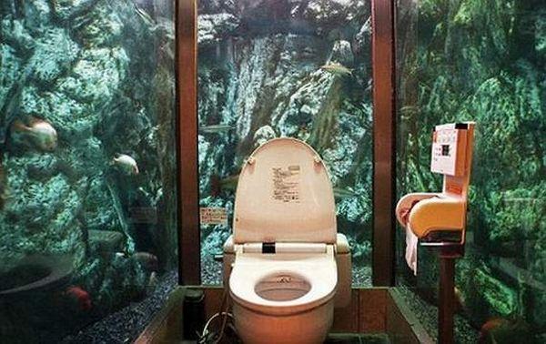 Самые необычные туалеты мира (12 фото)