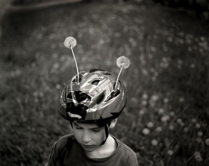 Прикольные картинки (117 фото)