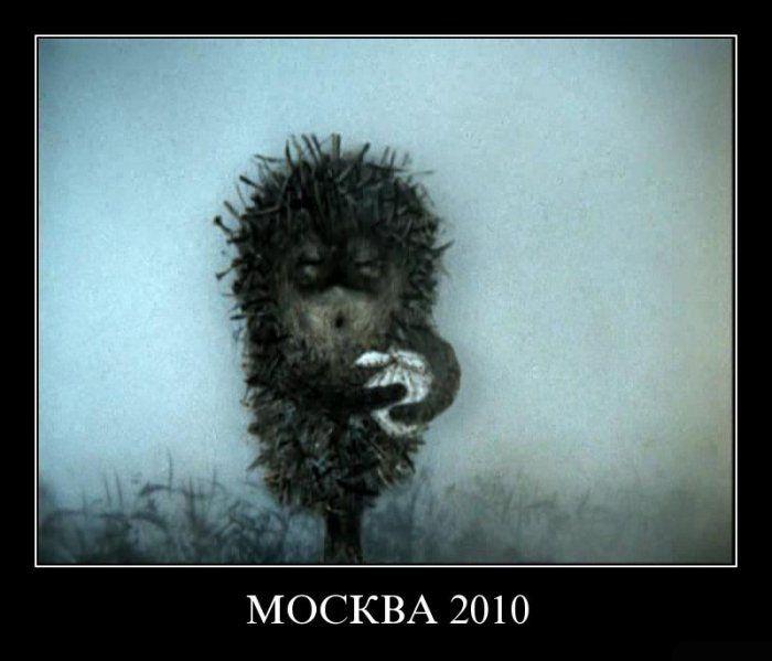 http://ru.trinixy.ru/pics4/20100813/demotivatori_07.jpg