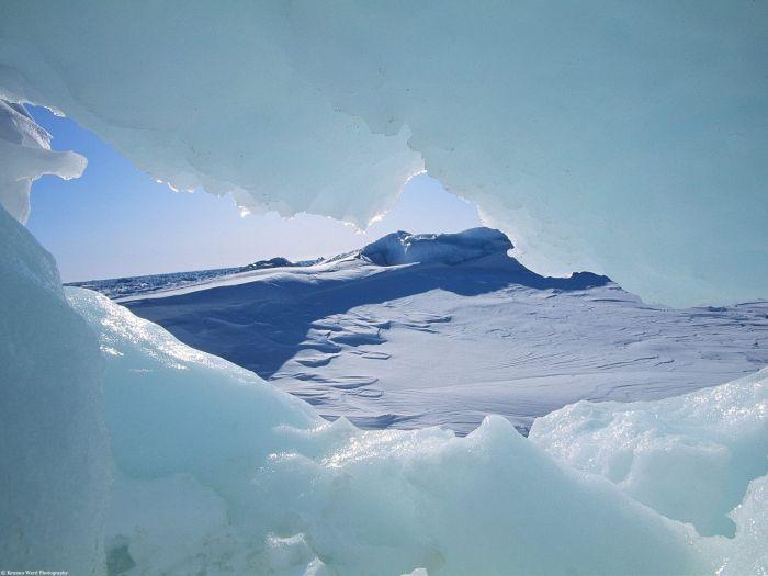 Это Арктика (25 фото)