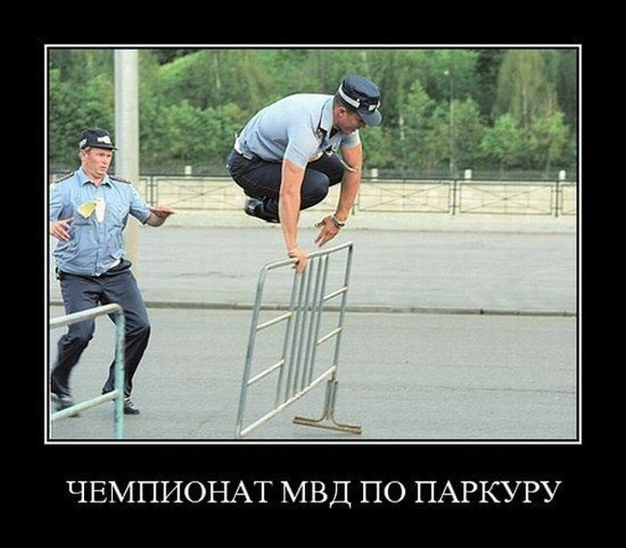http://ru.trinixy.ru/pics4/20100820/demotivatory_56.jpg