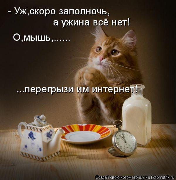 __Порция смеха (2)__