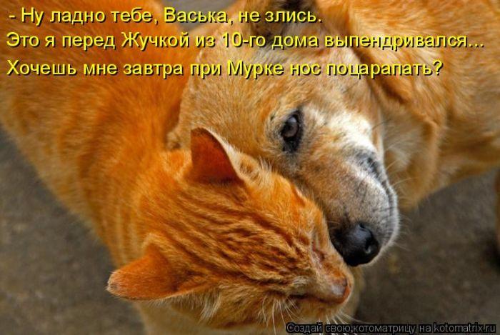 Инвестиции россии 2011
