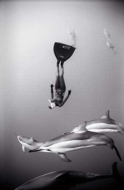 Красивые черно-белые подводные фотографии (72 фото)