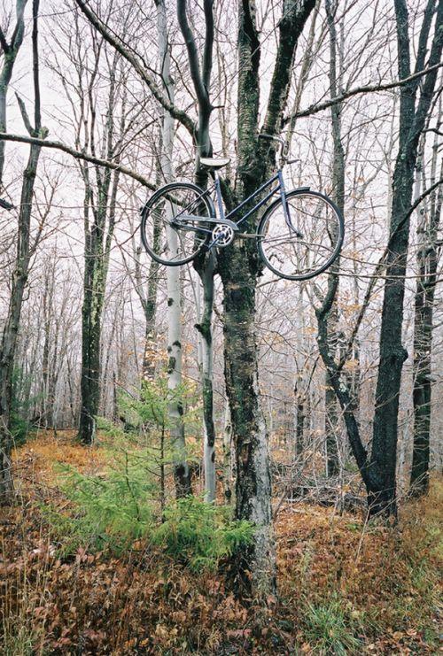 Необычные способы припарковать велосипед (20 фото)