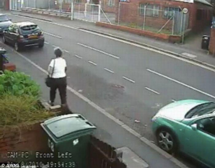 Женщина, кинувшая кота в мусорный бак (6 фото + видео)