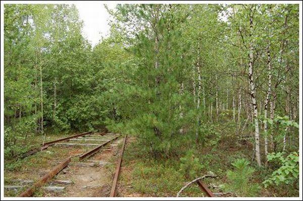 Заброшенная железная дорога (45 фото)