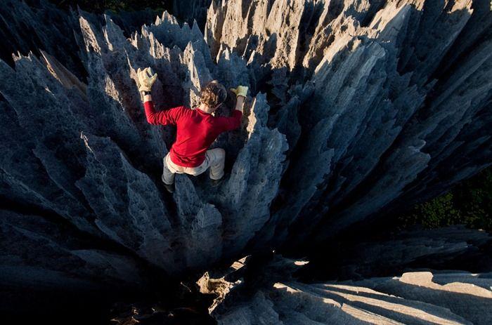 Каменный лес Мадагаскара (19 фото)