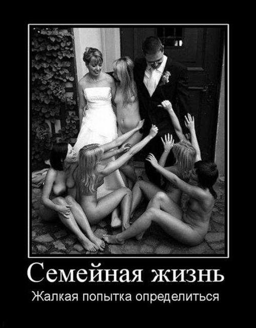 Демотиваторы (109 фото)