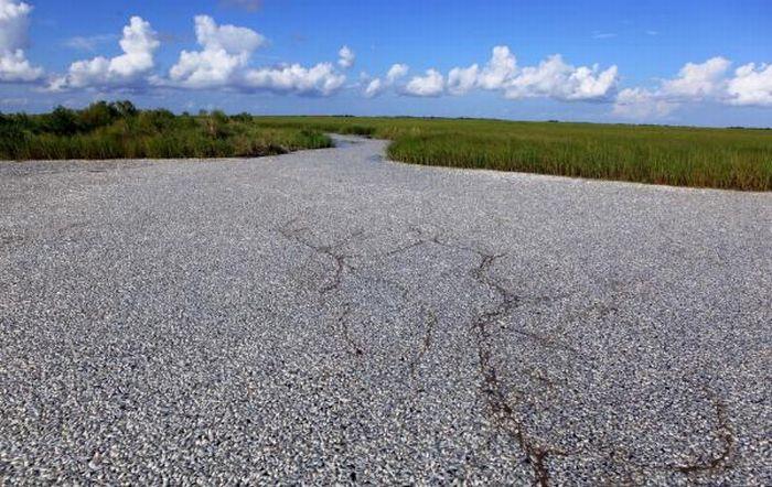 Это не дорога (2 фото)