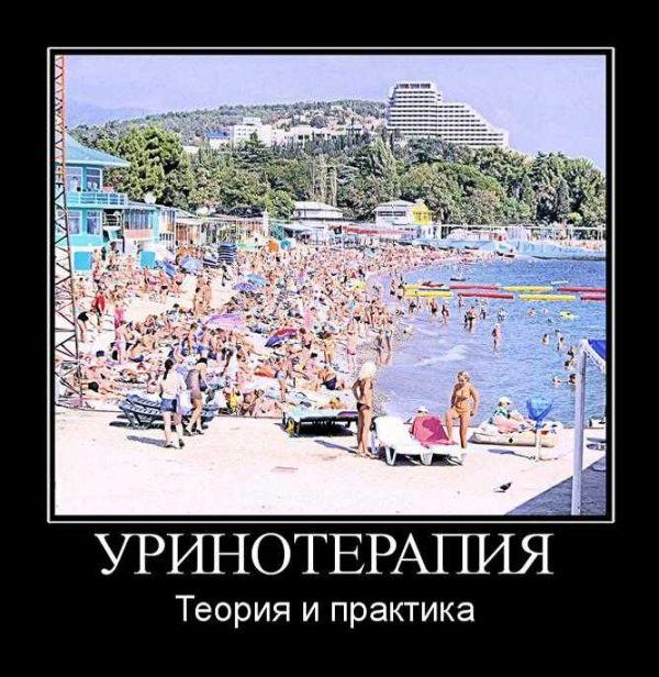 Демотиваторы (142 фото)