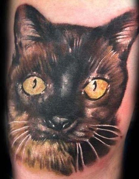 Кошки на татуировках (18 фото)