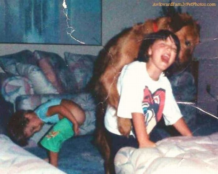Смешные и странные семейные фотографии с животными. Часть 2 (27 фото)
