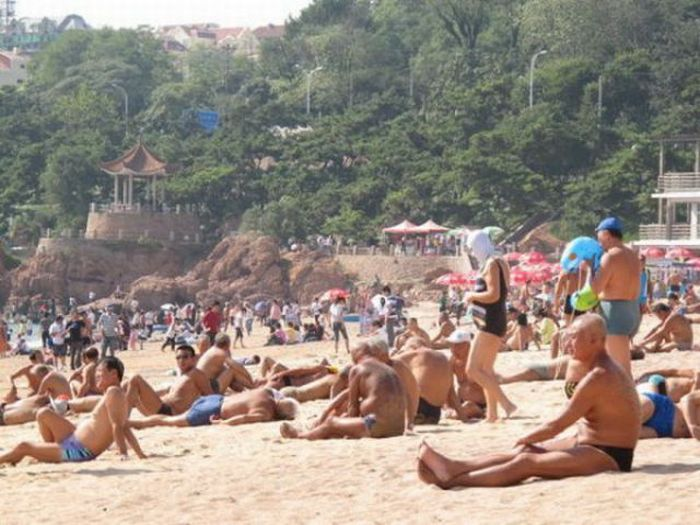 Странные купальники (8 фото)