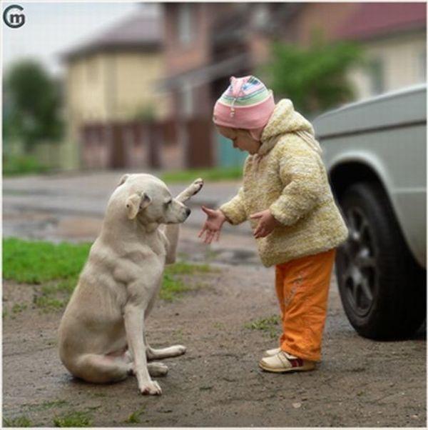 Ребенок и собака (4 фото)