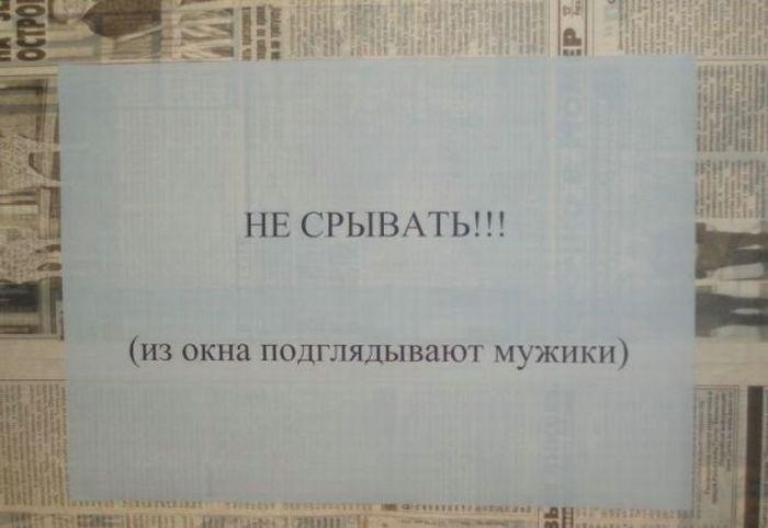 Подборка прикольных надписей и объявлений (31 фото)