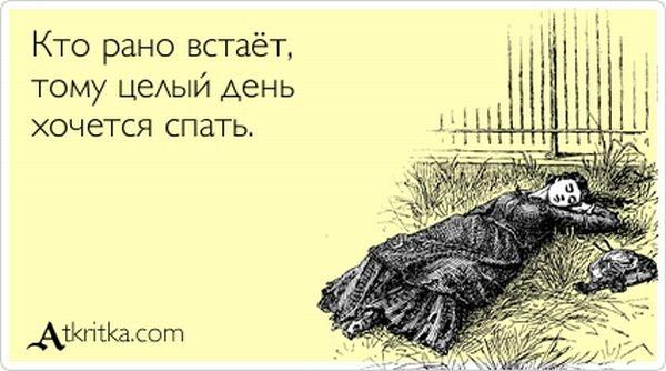 забавные открытки: