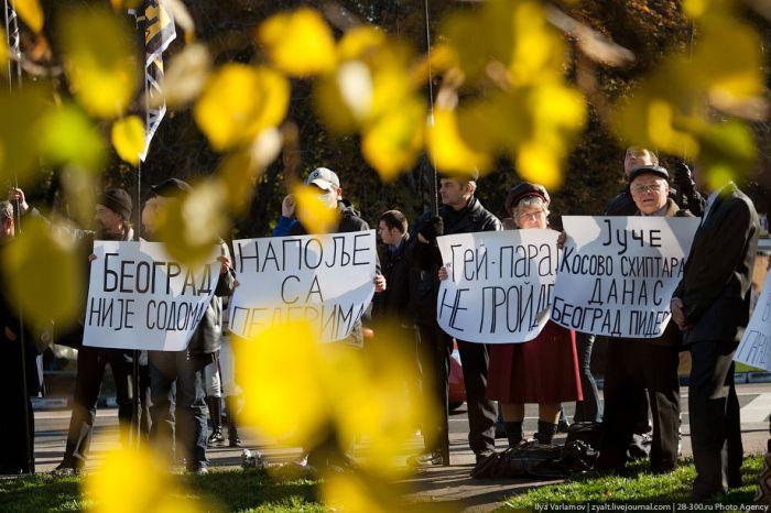 Анти-гей парад в Москве (15 фото)