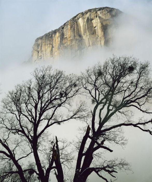 Потрясающие фотографии природы (59 фото)