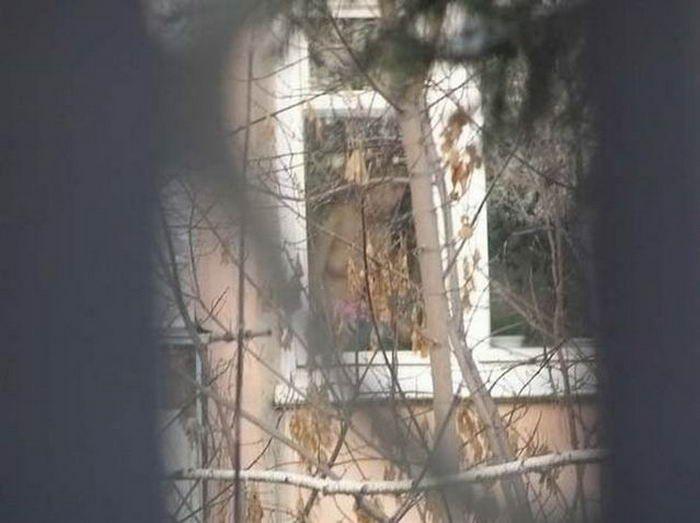 Подглядывая в окна (10 фото)