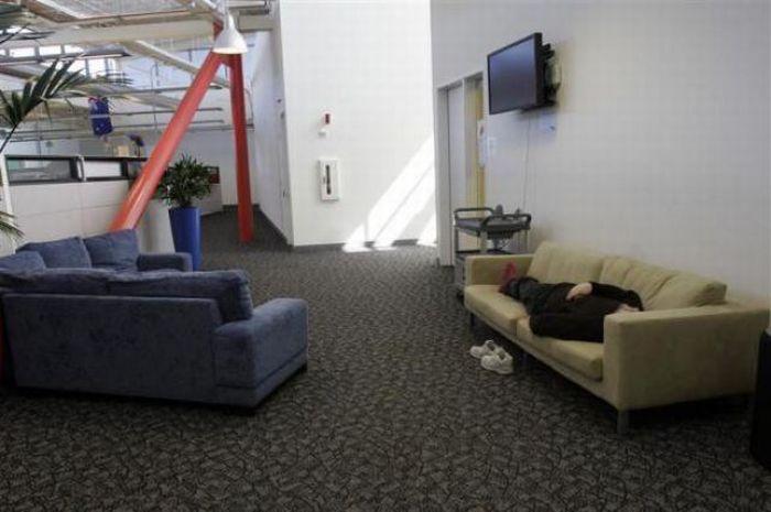 Офисы компании Google (32  фото)