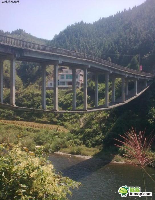 Интересный способ постройки моста (7 фото)