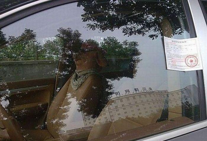 Странный пассажир (3 фото)
