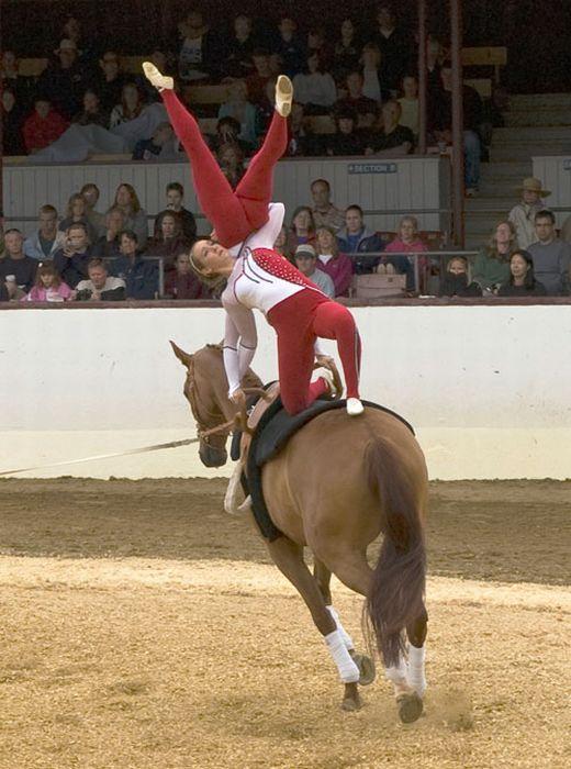 Чемпионат мира по акробатике на лошадях (10 фото)