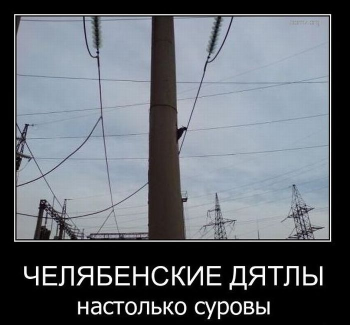 Демотиваторы (57 фото)