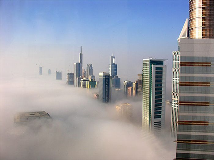 Дубай в тумане (8 фото)