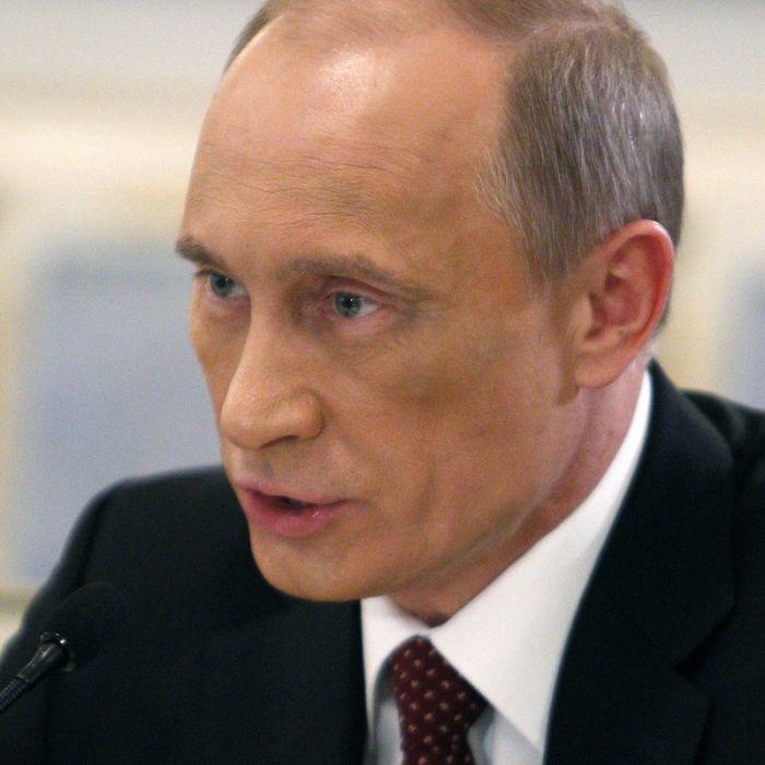 Путин и синяк (7 фото)