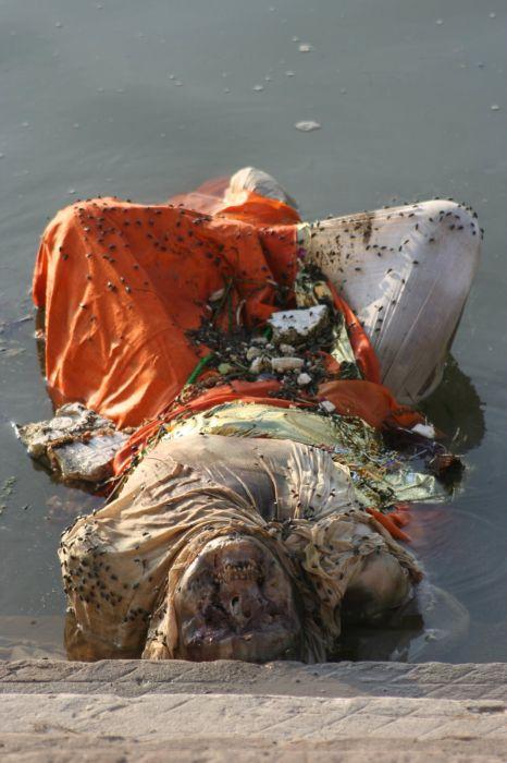 Ужасы священной реки Ганг (22 фото)