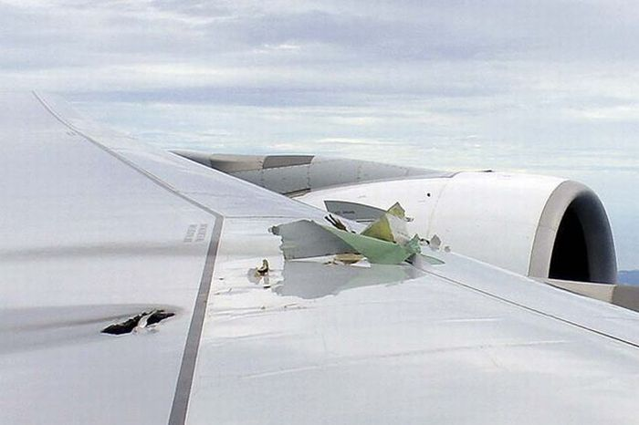 Аварийная посадка А380 (8 фото)