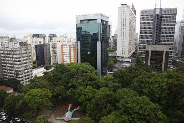 Толстая обезьяна в Сан Паулу (9 фото)