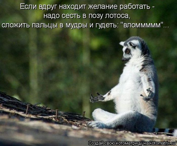 Изображение savepic ru сервис хранения