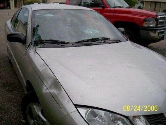 Машины, побитые градом (16 фото)