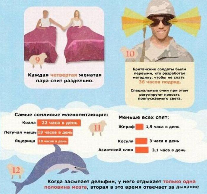 16 интересных фактов о сне, которые вы не знали (инфографик)