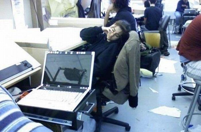 Спящие на работе (17 фото)