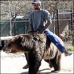 Люди ездят на необычных животных (22 фото)