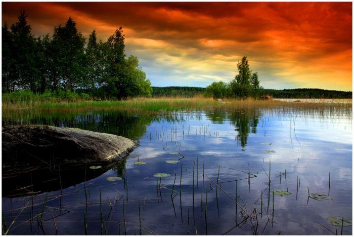 http://de.trinixy.ru/pics4/20101202/photos_of_nature_55.jpg