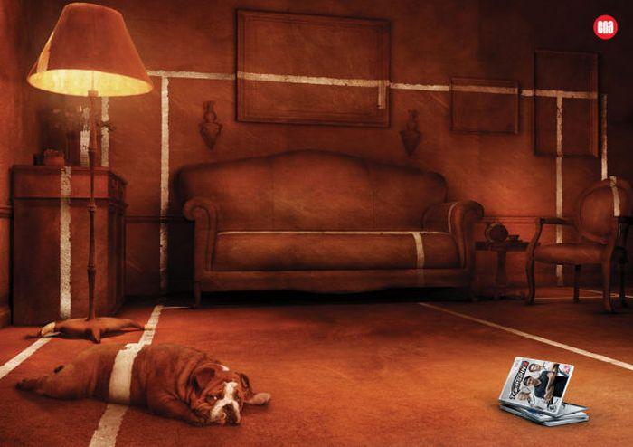 Креативная реклама с участием животных (38 фото)