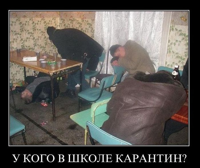 Демотиваторы (63 фото)