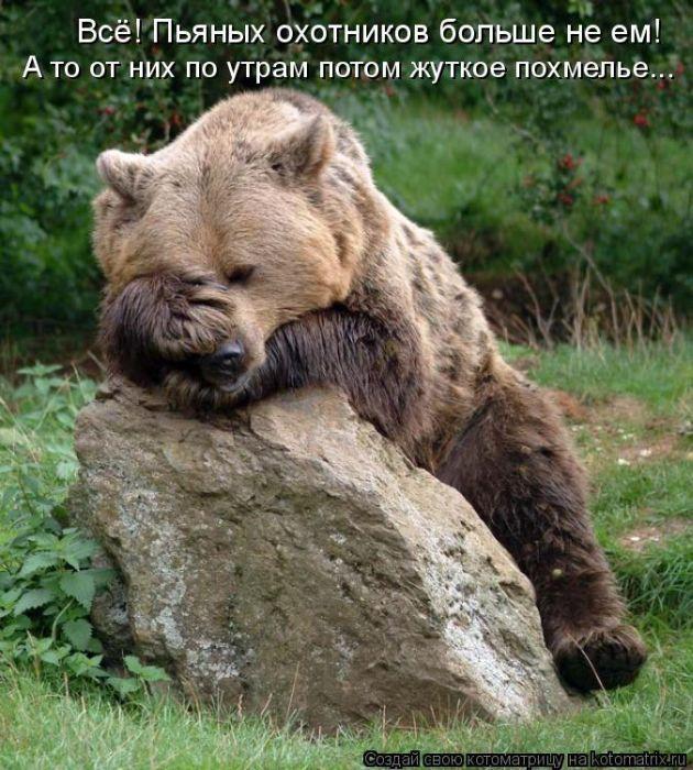 А мне как людям в глаза смотреть, Я - тот самый медведь!