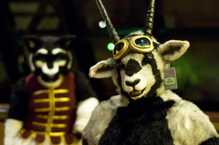 Странные люди в меховых костюмах (23 фото)