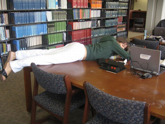 Спящие в библиотеках (45 фото)